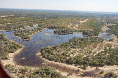 Expanse of the Okavango Delta